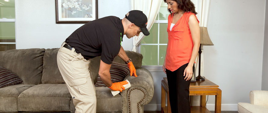 Cleveland, OH carpet upholstery cleaning